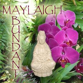 Abundant Maylaigh CD